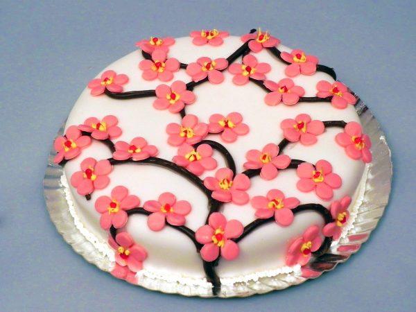 Tort Tiramisu 2